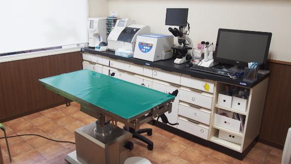 ぴーす白川動物病院