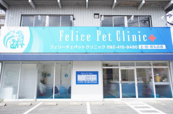 Felice Pet Clinic外観画像