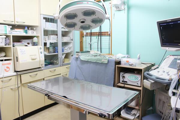 ライト動物病院