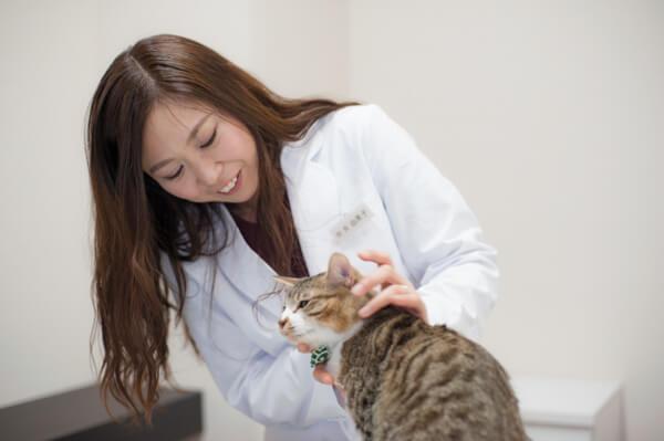 飼い主さまと動物に寄り添った獣医療のご提供