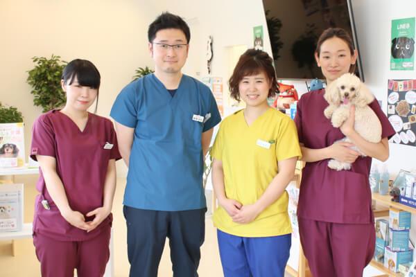 坂の上の動物病院スタッフ写真