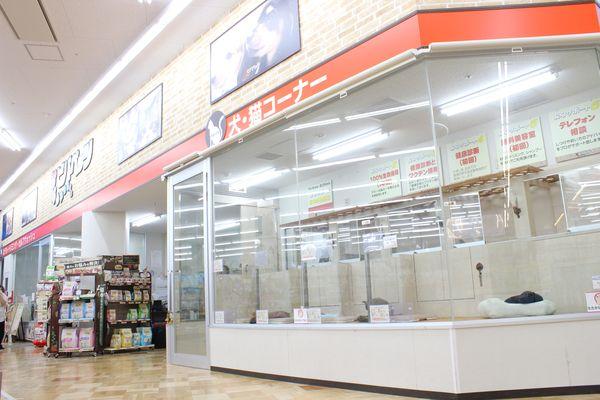 ビバペッツ和泉中央店