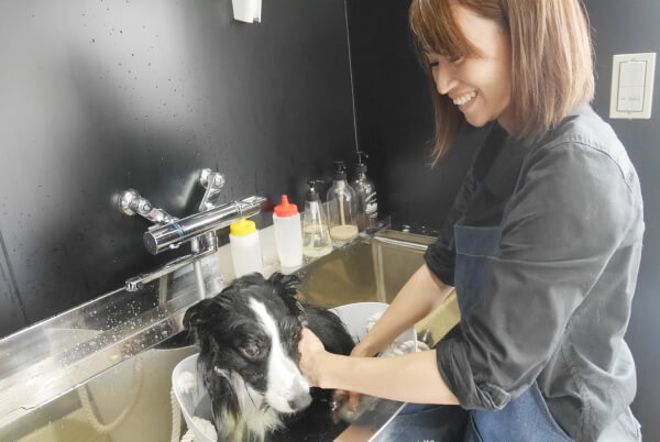 Dog Salon Ruu シャンプー写真