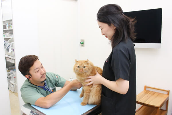 年中無休、夜間診療も行なっている病院