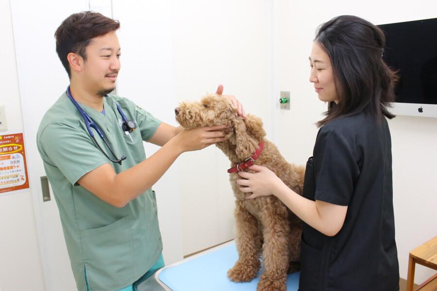 まつばら動物病院スタッフ写真