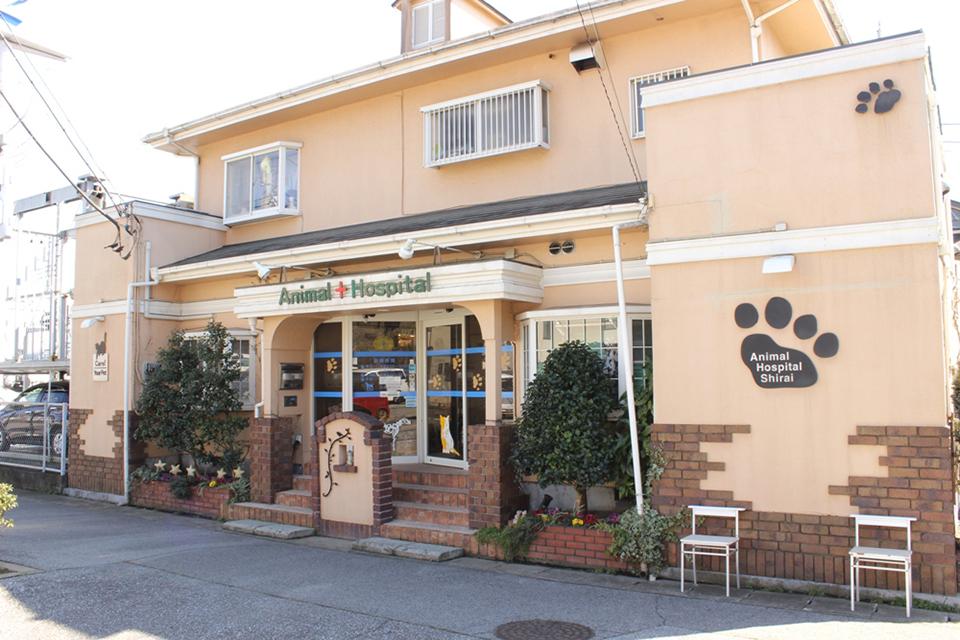 志津しらい動物病院