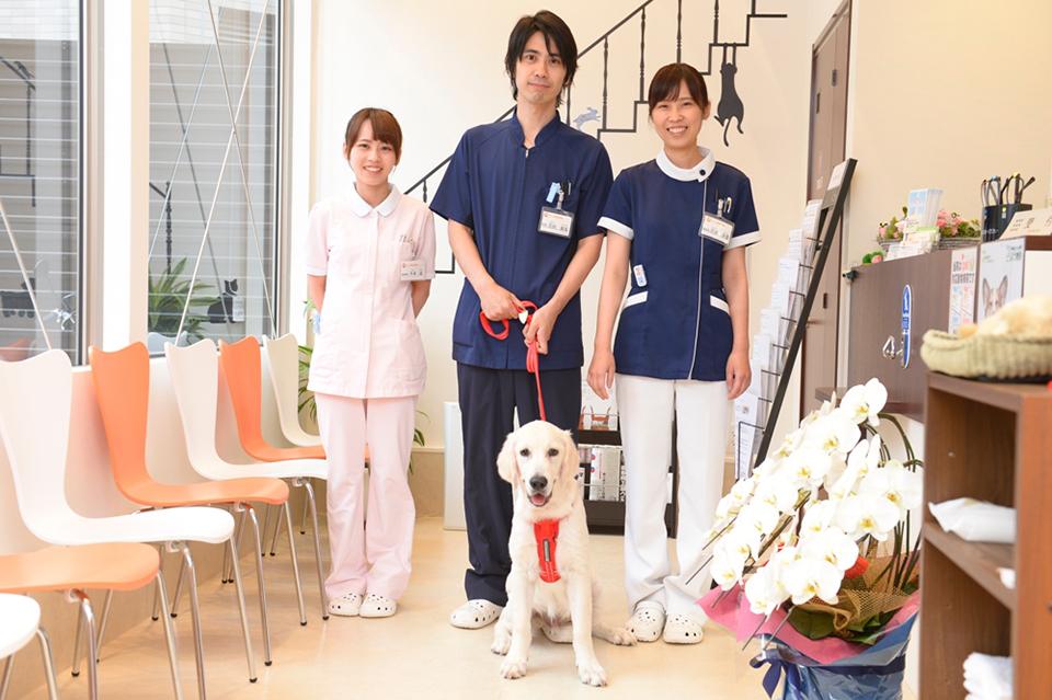 ウィズ動物病院