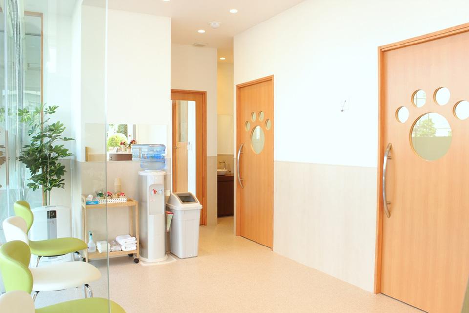 犬・猫別々の広々とした待合室と入院室なのでストレス軽減