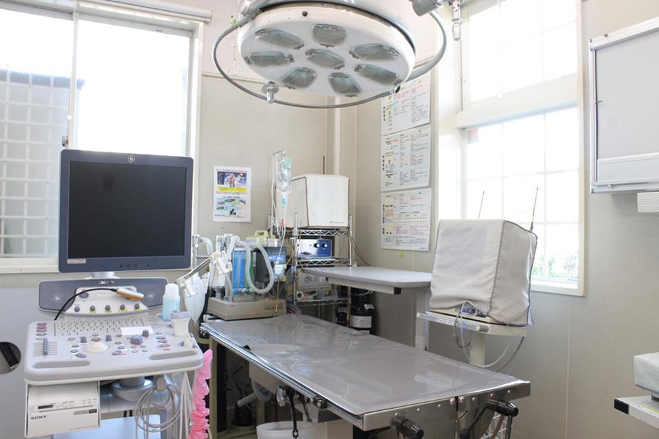 ほうなん動物病院