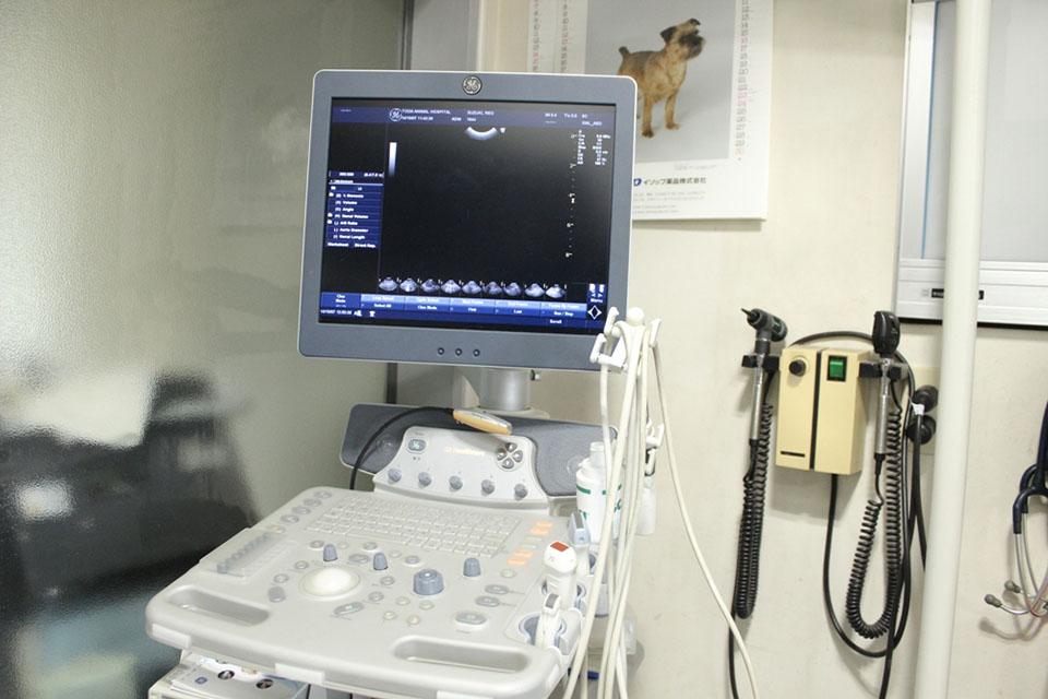 戸田動物病院内観画像