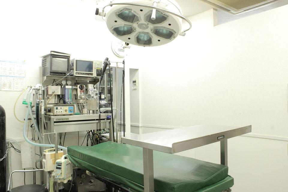 森動物病院 五香本院