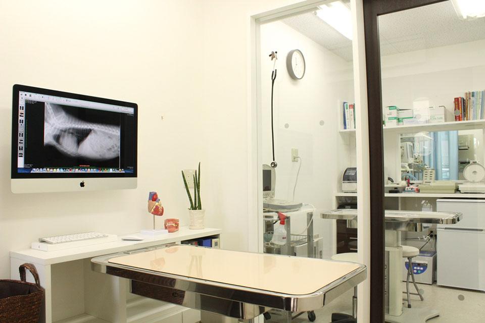 練馬テイルズ動物病院内観画像
