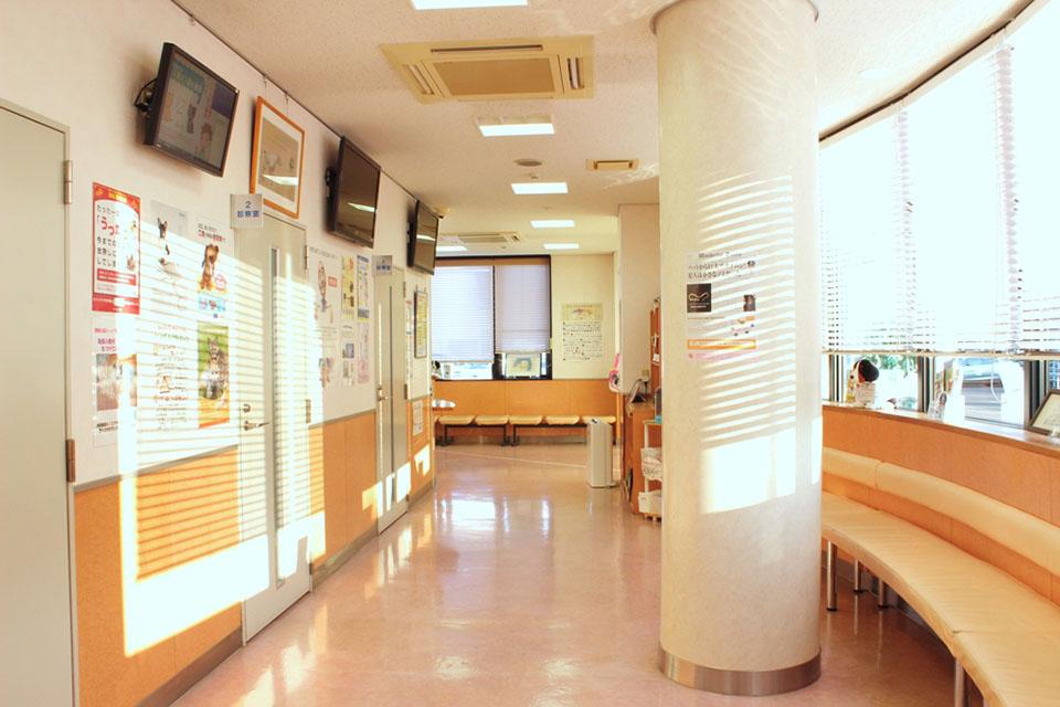 なる かわ 動物 病院
