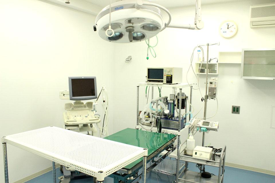 さつき台動物病院診察室写真