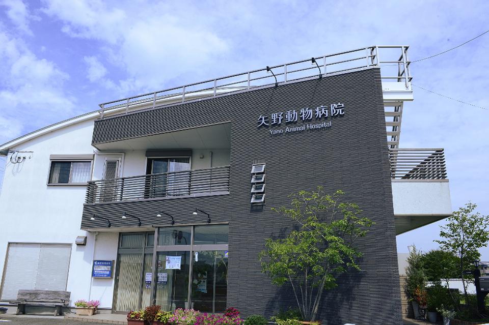 矢野動物病院の経営方針