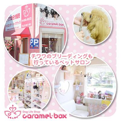 Caramel box 東大阪店