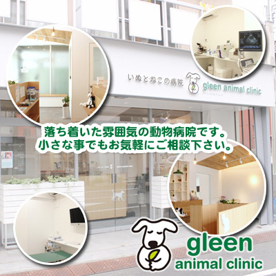 いぬとねこの病院 gleen animal clinic