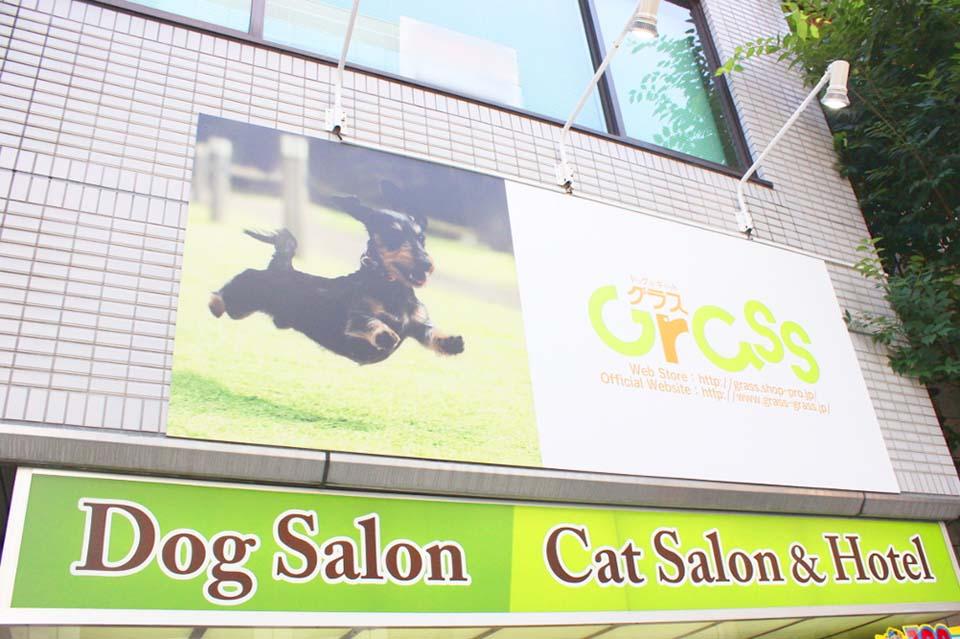 GRASS(グラス) 北浜本店