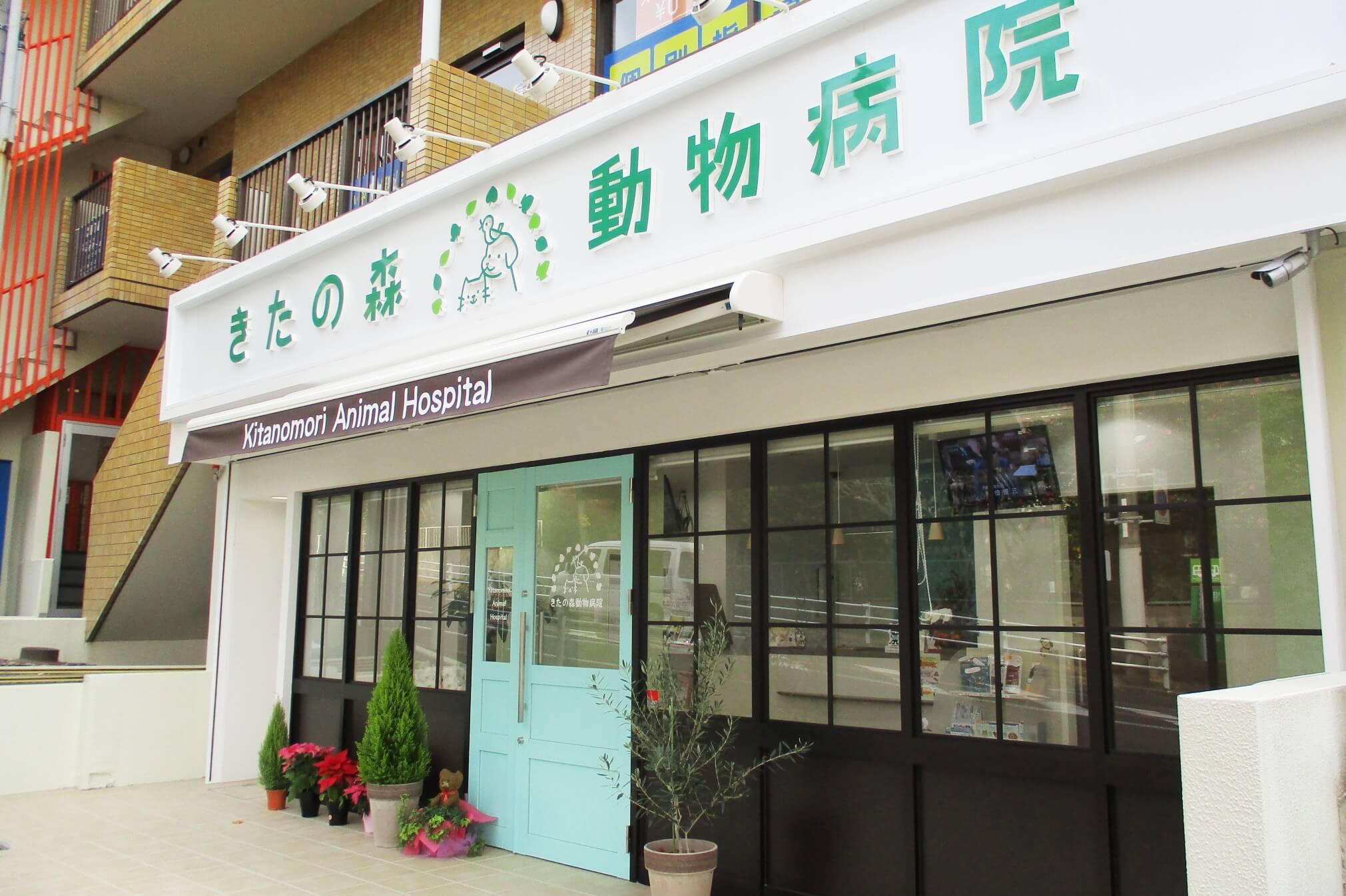 きたの森動物病院