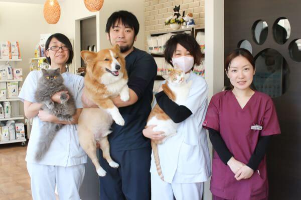 きもと動物病院 スタッフ写真