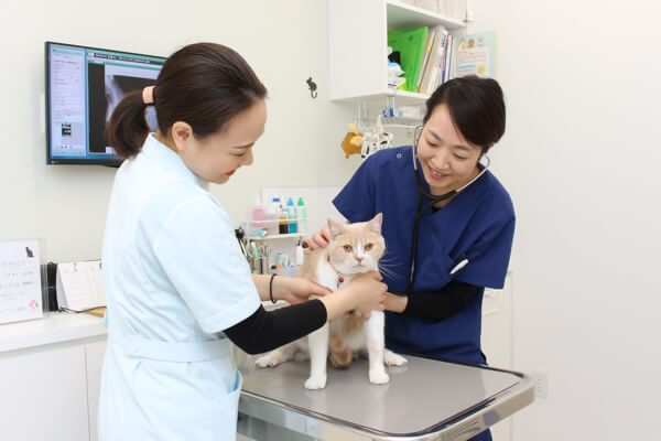 飼い主さまとペットの「心」に寄り添う診療