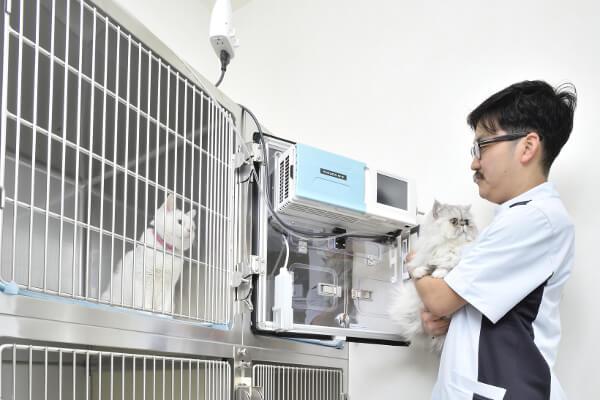 浦和 動物の病院(ペットホテル)