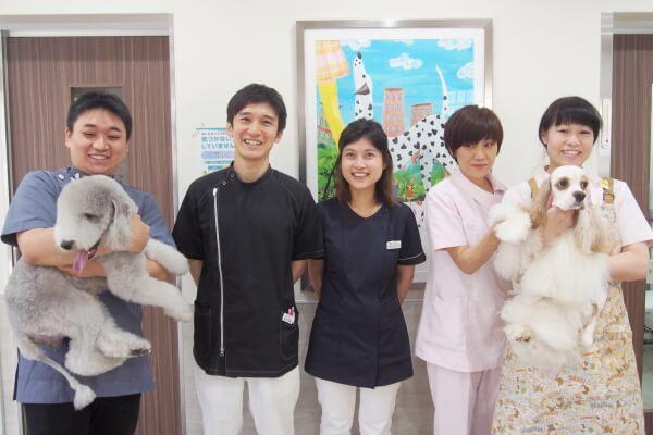 スイミー動物病院