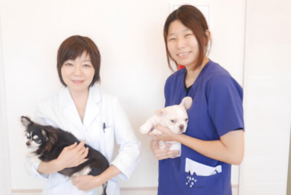東大阪動物病院