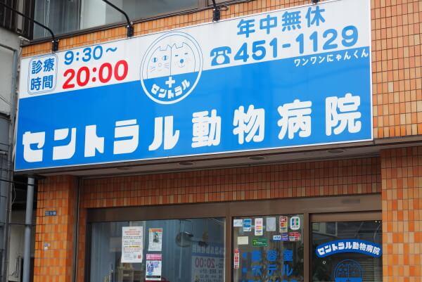 習志野市で評判の動物病院6選!