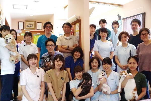 昭島動物病院