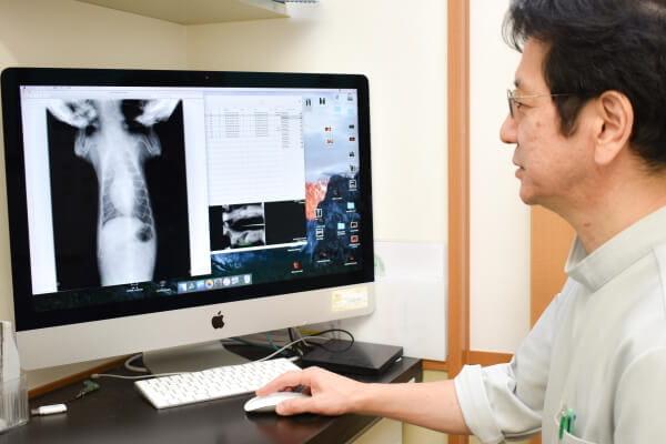 獣医師同士で症例を検討。治療のレベルアップに繋げています