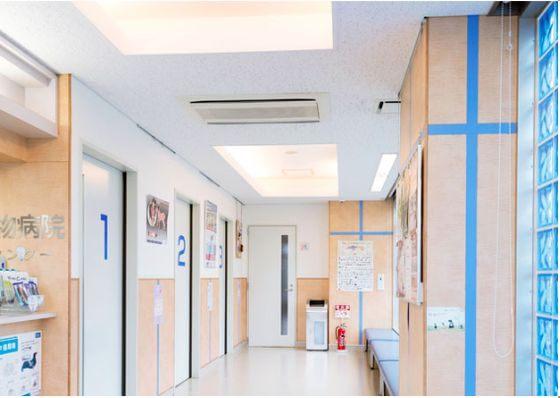 最新の機器を導入している動物病院