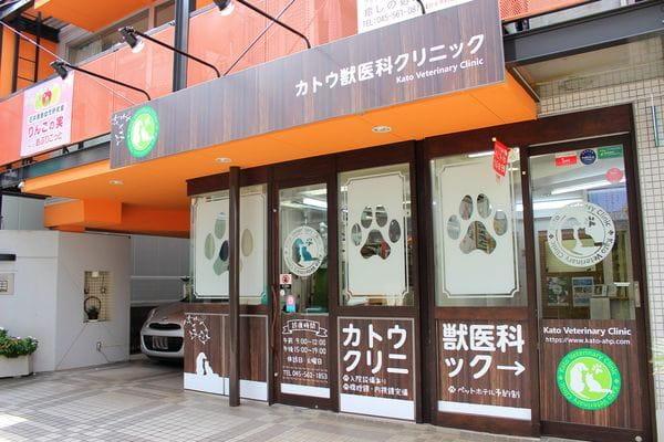 土日・祝日も診療可能で忙しい飼い主さまにおすすめの動物病院