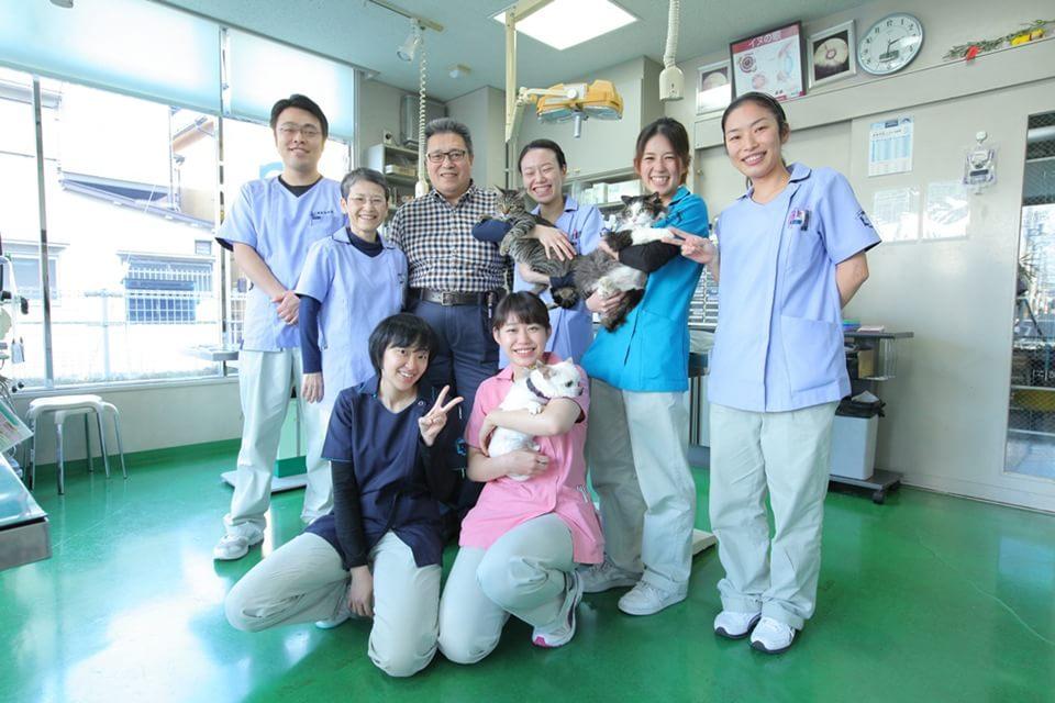小儀動物病院