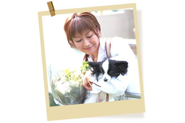 姫路動物病院(ホテル)