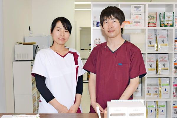 猫の病院すとう(ホテル)