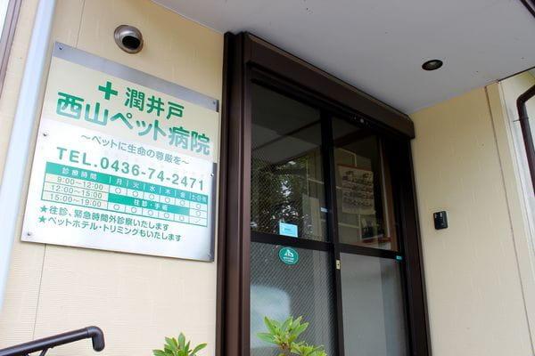 潤井戸西山ペット病院のメイン画像