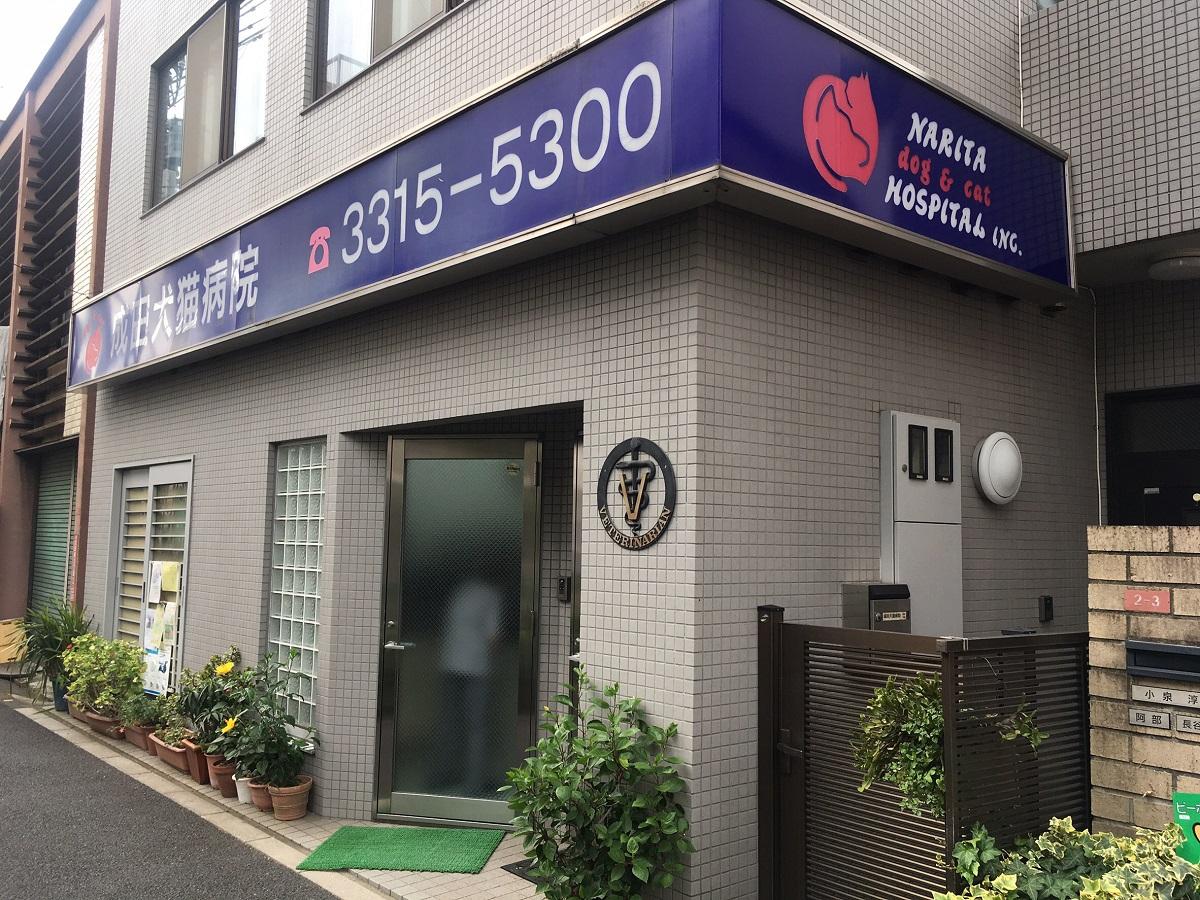 成田犬猫病院