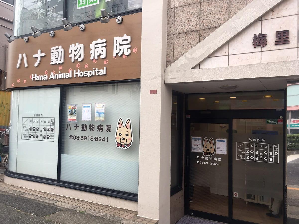ハナ動物病院