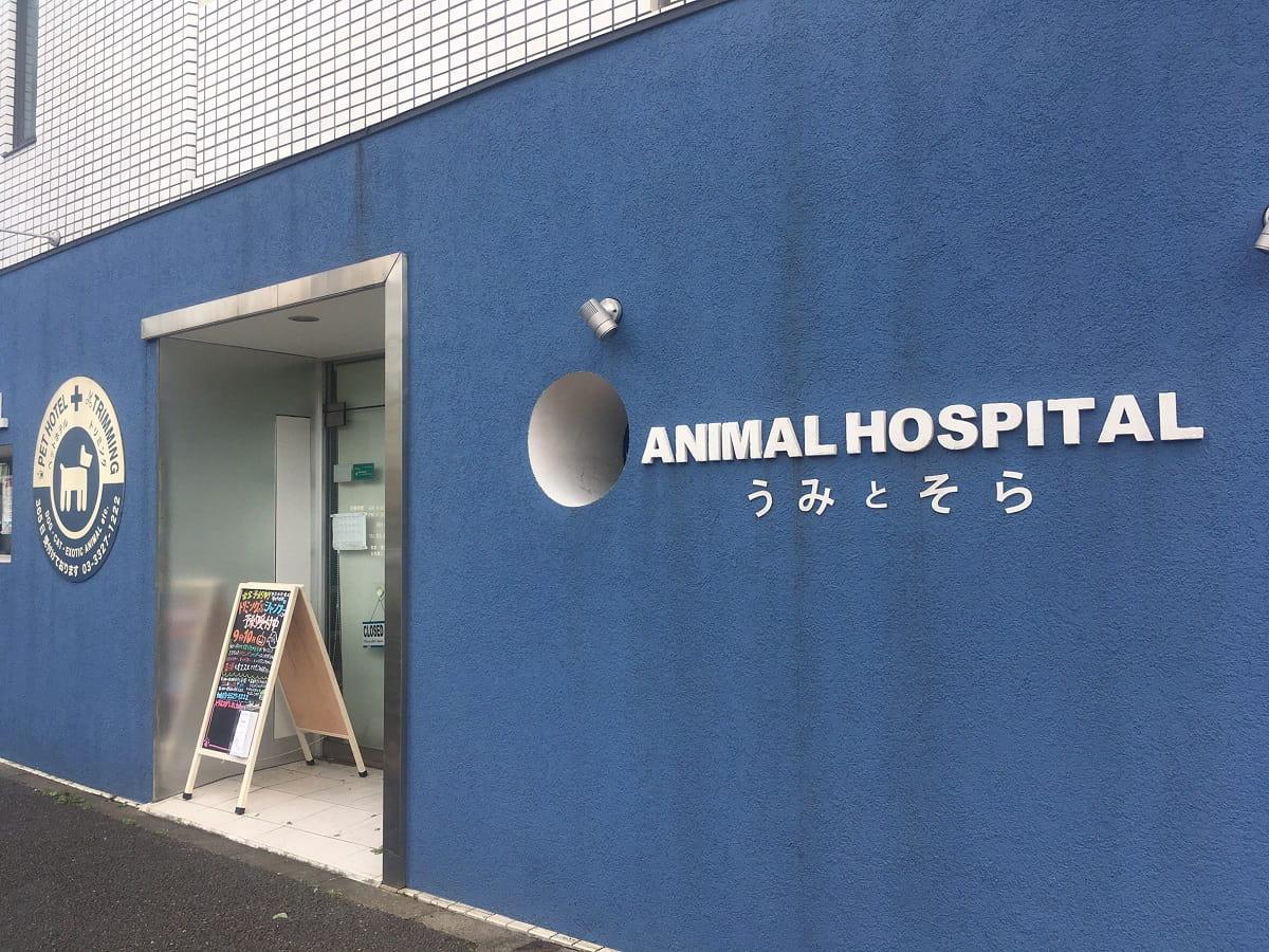 動物病院うみとそら