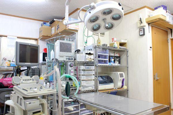 大沢どうぶつ病院