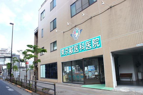 東京獣医科医院