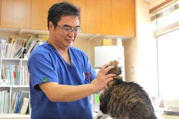 熱海動物愛護病院