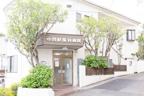 中西獣医科病院