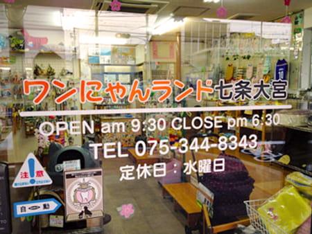 ワンにゃんランド 七条大宮店【5/1OPEN】
