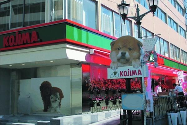 ペットの専門店コジマ 六本木店(ホテル)