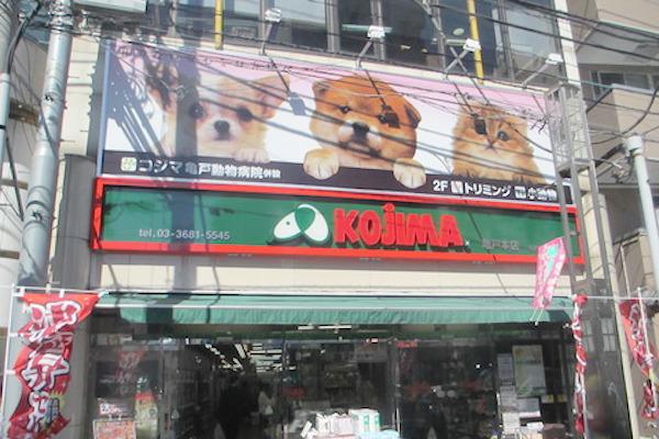 ペットの専門店コジマ 亀戸本店(ホテル)