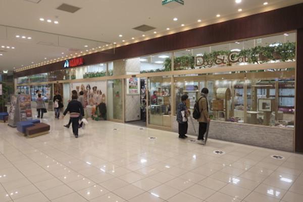 ペットの専門店コジマ アリオ北砂店(ホテル)