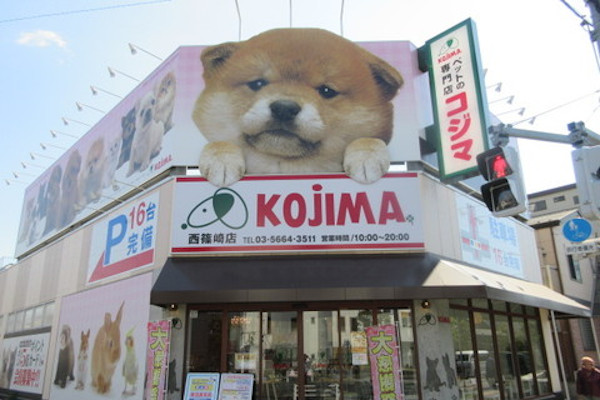 ペットの専門店コジマ 西篠崎店(ホテル)