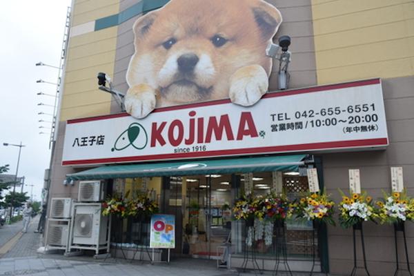 ペットの専門店コジマ 八王子店(ホテル)